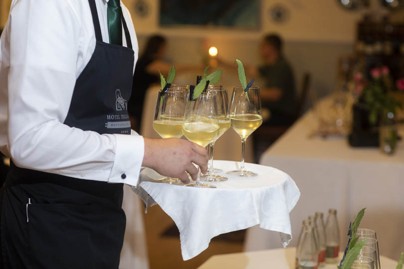 HOTEL TRIGLAV BLED - Gin Twist delavnica